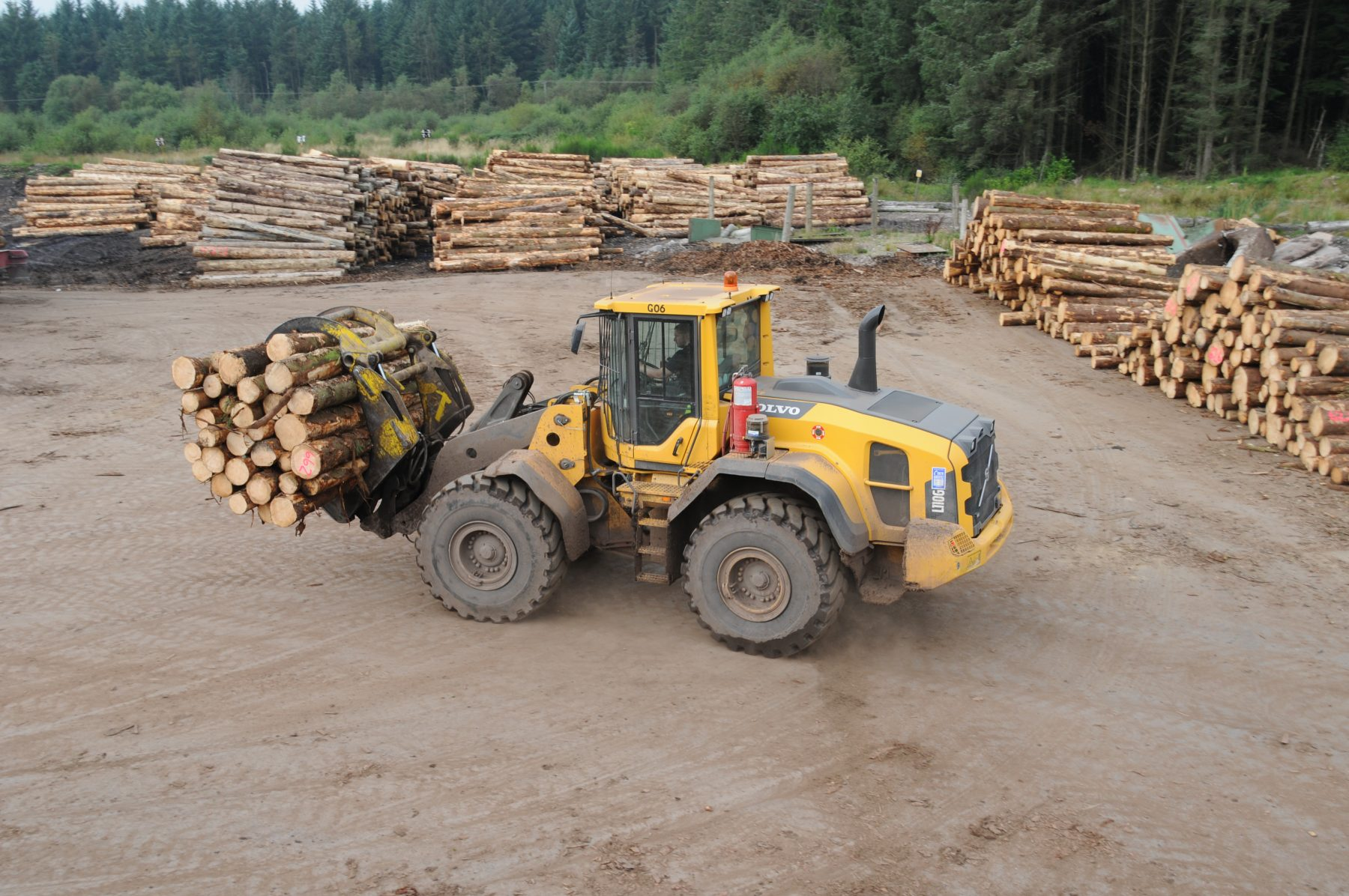 Gorrel Timber